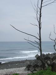 20080501_花蓮海月海景民宿_40 by 唐妮可☆吃喝玩樂過生活