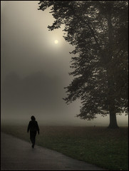 1541 Morning Fog (andy linden) Tags: park mist london fog sunrise dawn greenwich walker 1541 andylindenportfolio