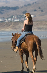 Equestrian, Female Girl Horse rider on Morro Strand female-equestrian-15oct2008