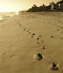 footprints in the sand (SmartAnnie (Away)) Tags: beach sepia footsteps southerncalifornia orangecounty oc lagunabeach alisoparkbeach