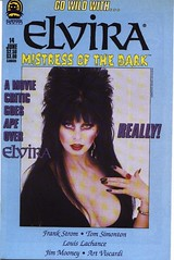 Elvira, Mistress of the Dark #14 cover