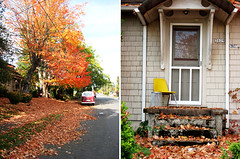 My first real Fall in the States (Amy Nieto) Tags: autumn fall nature portland fallfoliage volky