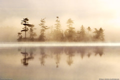 Somes Pond, Mount Desert Island, Maine (Greg from Maine) Tags: morning trees mist water fog sunrise wow reflections nationalpark foggy scenic sunrays acadia scenics morningmist acadianationalpark somesville wetreflection naturesgallery anawesomeshot flickrphotoaward scenicsnotjustlandscapes flickrestrella acadiaphoto mainephoto acadiaimage awardreflections