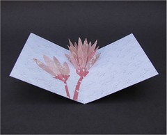 Simple Flower Pop-up (cornerstonelae) Tags: flower paper 3d handmade card popup etsy greeting
