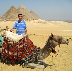 My friend Miss. Camel / Pyramids of Giza,Egypt.