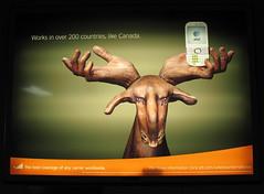 Moose Hands