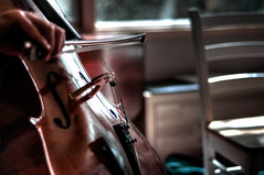 practice (nosha) Tags: portrait musician music selfportrait fall me beautiful beauty self 50mm nikon hand bokeh finger cello bow instrument string nikkor pm 2008 horsehair fifty nifty 50mmf18 d300 fhole nosha niftyfifty violincello hnnf