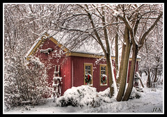 after the storm (LastBestPlace) Tags: winter snow wisconsin waukesha christmascard supershot addictedtoflickr goldenmix abigfave currierandives superaplus aplusphoto diamondclassphotographer theperfectphotographer happinessconservancy winnr thebestofday portalwisconsinorgselected gnneniyisithebestofday damniwishidtakenthat grouptripod portalwisconsinorg121108