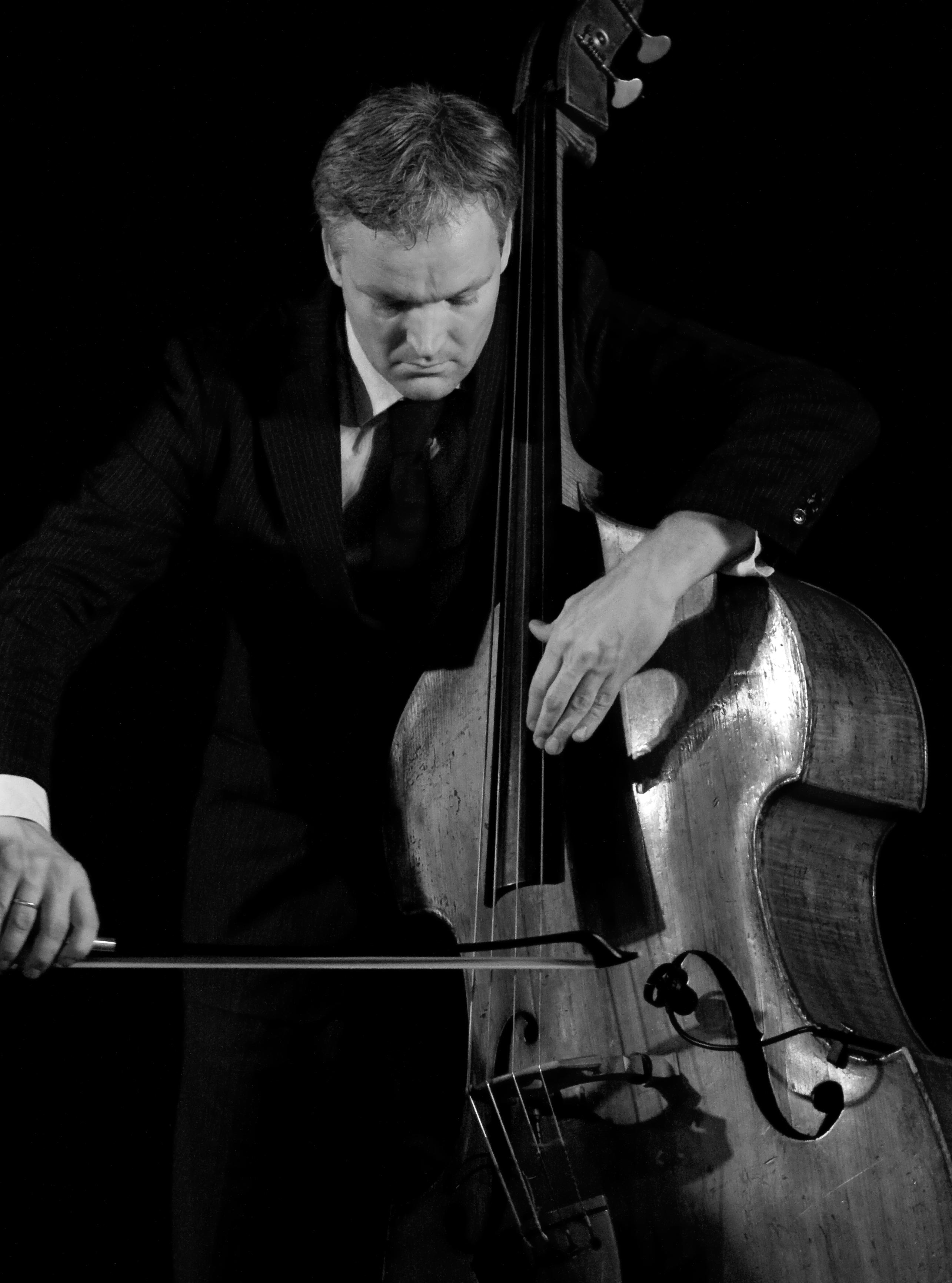 低音提琴/Contrabass、Doublebass、Stringbass/コントラバス/Kontrabass(Kontrabaß)、Bassgeige(Baßgeige)/Contrebasse/Contrabbasso