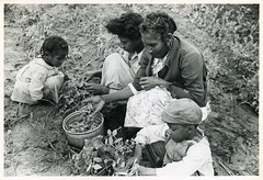 Project family picking peas in their garden, Flint River Far... (New York Public Library) Tags: gardens georgia newyorkpubliclibrary peas domesticlife depressionera xmlns:dc=httppurlorgdcelements11 africanamericanfamilies dc:identifier=httpdigitalgallerynyplorgnypldigitalid1260092 dc:coverage=1939
