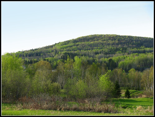 Flickriver recent photos from clair parish new brunswick canada - Couleur du printemps ...