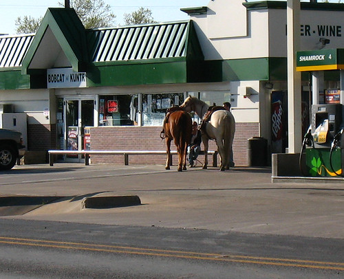 horseparking2