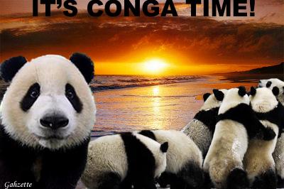 Conga Time