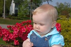 MADDISON MAY 2008