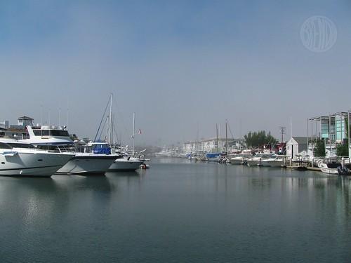 misty/sunny