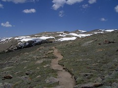 HPIM1219 (jimvickers) Tags: colorado elk rockymountainnationalpark continentaldivide bouldercreekpath summer2008