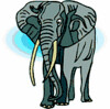 elephant (3doel82) Tags: fish bird animals insect gambar koleksi ikan belajar burung binatang carnivora serangga mamalia amphibi