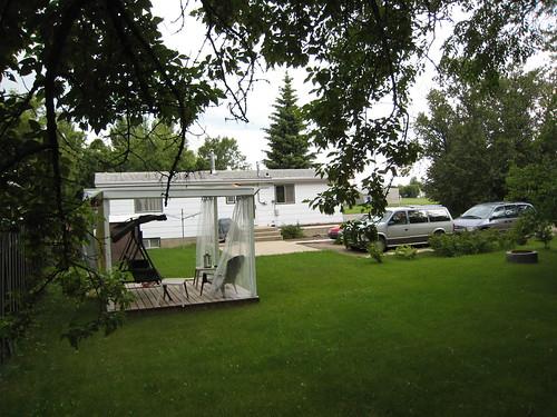yard summer 2008