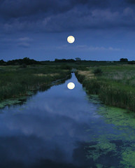 Mirror image (James Jordan) Tags: moon reflection water night creek wow twilight stream dusk full explore reflect moonrise coolshot mywinners abigfave impressedbeauty aplusphoto goldstaraward