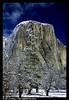 West face of El Capitan in winter.1 Yosemite National Park, California, USA.