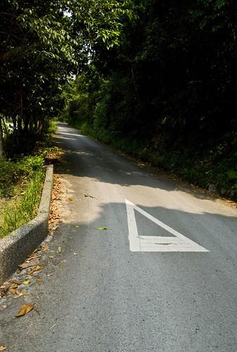 這條路上去通往櫻悅民宿