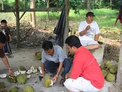 durian @ KKB - pintarian 012 (shamamir) Tags: durian makan