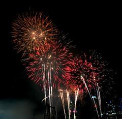 firework (ypchua81) Tags: singapore firework ndp d300
