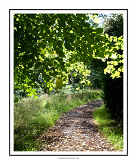 Woodland Lane (fileacn) Tags: castle history canon scotland alba perthshire chapel palace escocia medieval kings 5d scone presbyterian coronation schottland boothill schotland scozia cosse stoneofscone stoneofdestiny moothill philipmilne grianghrafadoireachtfeileacan  scoine sgain