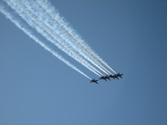 Blue Angels IMG_1834 Photo