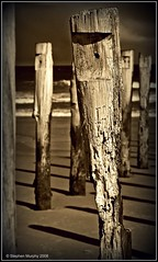 Last Legs (_setev) Tags: travel sea newzealand beach water coast sand stephen utata otago dunedin murphy downunder setev utatabythesea downunderphotos stephenmurphy utata:project=utatabythesea httpdownunderphotosblogspotcom