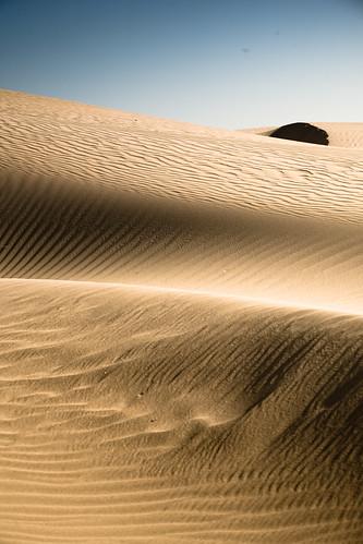 Pismo Beach Sand Dunes. Pismo Beach Sand Dunes, October (Set)