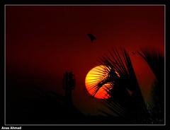 Sundown Over North Karachi (Anas Ahmad) Tags: pakistan sunset art sundown north ahmad karachi ahmed anas 11a flickrsbest northkarachi aplusphoto anasahmad anasahmadphotography