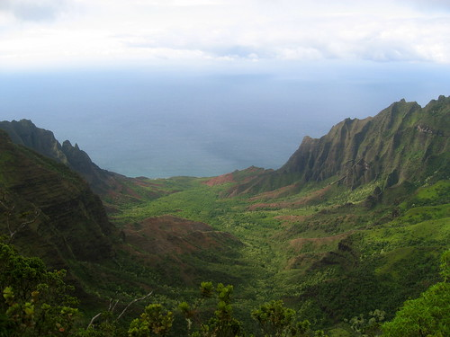 Na Pali Lookout Trail