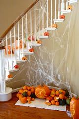 pumpkin patch (sevenworlds16) Tags: birthday party halloween kids pumpkin first indoor nicholas theme patch