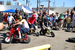 Choppercabras (14) (digablesoul) Tags: bike bicycle race fight sigma mini demolition bull moto atomic derby chariot kiddie cycles 30mm choppercabras sfvisbf d40x