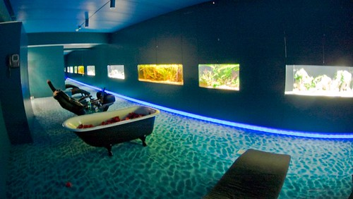 Why does google's zurich office have a bathtub?