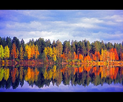 autumn mirror (Henri Bonell) Tags: autumn fall nature water reflections finland mirror soe  outstandingshots mywinners abigfave anawesomeshot superaplus aplusphoto henribonell