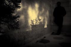 #10 :: Night..is a Time for Reflection... (SonOfJordan) Tags: light shadow blackandwhite bw blur night canon dark eos blackwhite mood shadows noiretblanc amman jordan xsi 450d  samawi sonofjordan shadisamawi  wwwshadisamawicom