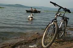 bici 18 (ONG Bambini nel Deserto Onlus) Tags: africa bambini biciclette veicoli bambinineldeserto simonaottolengo