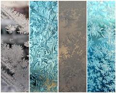 frostflowers (tinkatinka) Tags: winter ice window mosaic patterns frosty icecrystal frostwork kuura kuurankukka jkukka