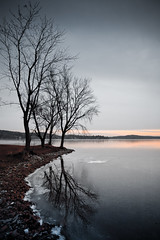 Reflections (Loren Zemlicka) Tags: november autumn trees winter sunset sky lake fall ice nature water wisconsin canon reflections landscape frozen midwest branches horizon bank shore 5d 2008 wi canonef1740mmf4lusm merrimac lakewisconsin canoneos5d lorenzemlicka