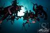 divers party