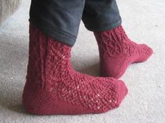 Rose Trellis socks