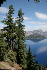 On The West Rim At Crater Lake Oregon (Tom Stanley Janca) Tags: craterlakeoregon tomstanleyjanca jancasartphoto