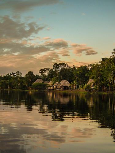 Amazon near Iquitos