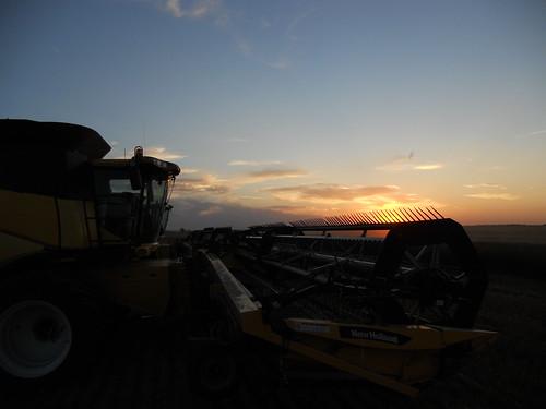 Plainville sunset