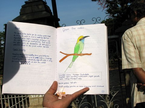 Abhijna's bird notebook