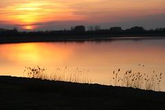 sunset (Photos Marlies) Tags: sunset lake france reflection reed zonsondergang meer frankrijk riet weerspiegeling lacduder