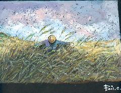 campo di grano (cicipeis) Tags: sardegna art arte campagna cici paesaggio grano spaventapasseri dipinto pittore peis spatola colourartawards cicipeis