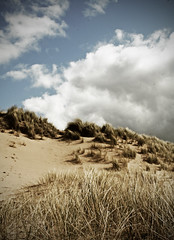 rhossilli dunes (.FuturePresent.) Tags: ocean uk family sea england sky sun beach water wales clouds mar seaside interestingness spring interesting sand britain head heather dunes united kingdom surfing explore dorset future present claudia gower worm gabriela marques wimborne rhossilli vieira smrgsbord milllane wormshead wormhead paisdegales unit10 futurepresent aplusphoto rhossillibeach worldwidelandscapes claudiavieira claudiagabrielamarquesvieira claudiagabrielamarquesvieiraportfolio coastgen uniti0 naturegen me2youphotographylevel1